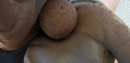 Seedballs selber machen