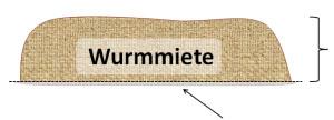 Wurmmiete