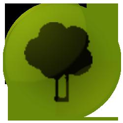 Baum_laub