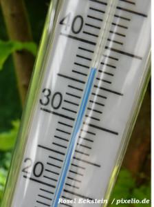 Wurmkisten Temperatur