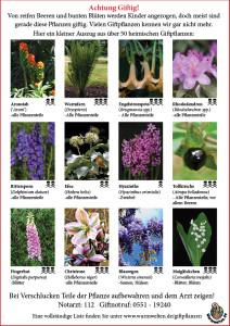 Schautafel giftiger Pflanzen