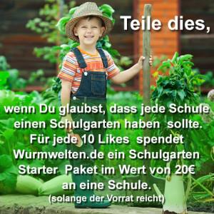 Schulgarten Aktion