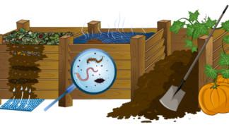 Kompostbehälter selbst bauen – So geht es
