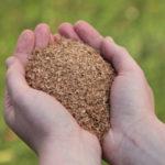 Bokashi - Der japanische Komposter