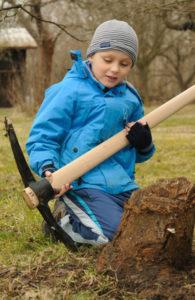 Baumstumpf ausgraben