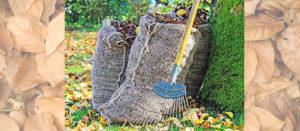 gartenlaub-kompostieren