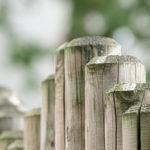 Die Vielfalt bei der Gartengestaltung