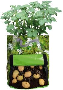 Kartoffel Pflanzentasche