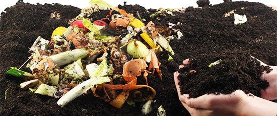 Kompost Material