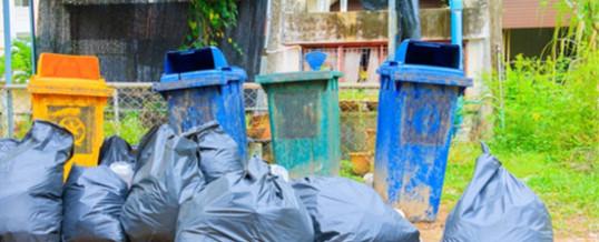 Mülltonnenboxen im Garten