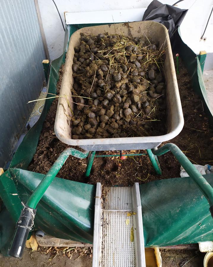 Pferdemist Komposter mit Schubkarre