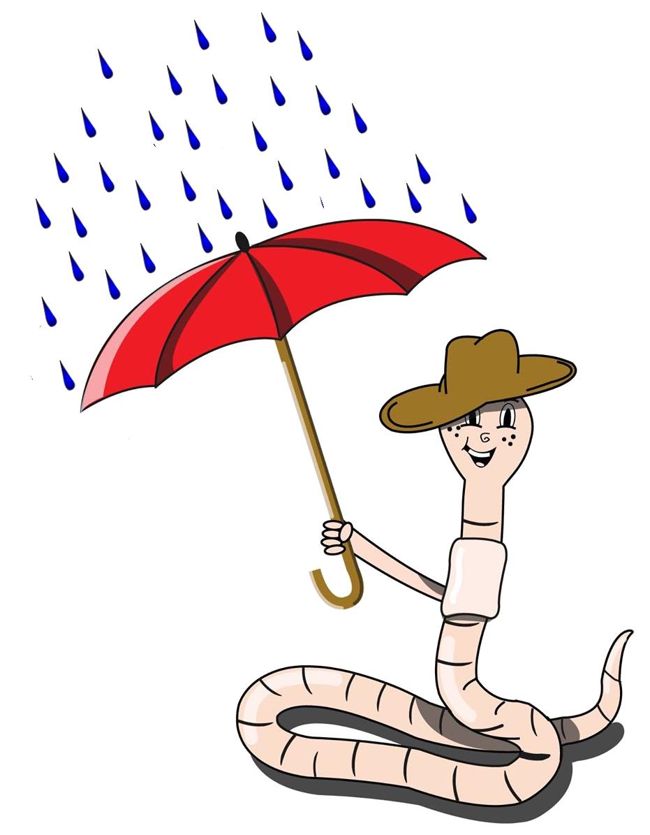 Regenwurm im Regen