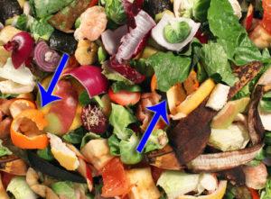zitrusfrüchte auf dem Kompost